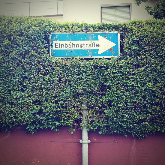 Einbahnstrasse Check This Out sign Taking Photos one way road