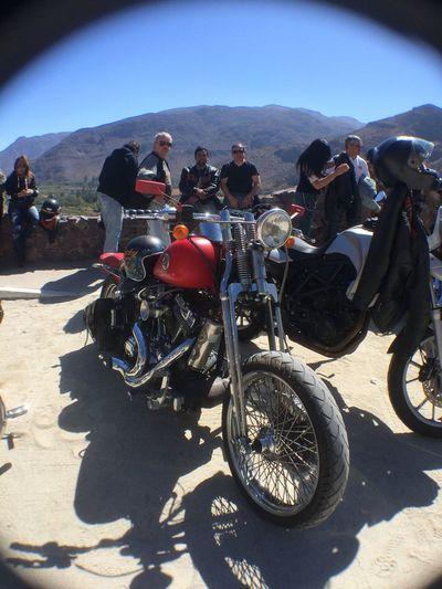Enjoying Life Motorcycles Harleydavidson