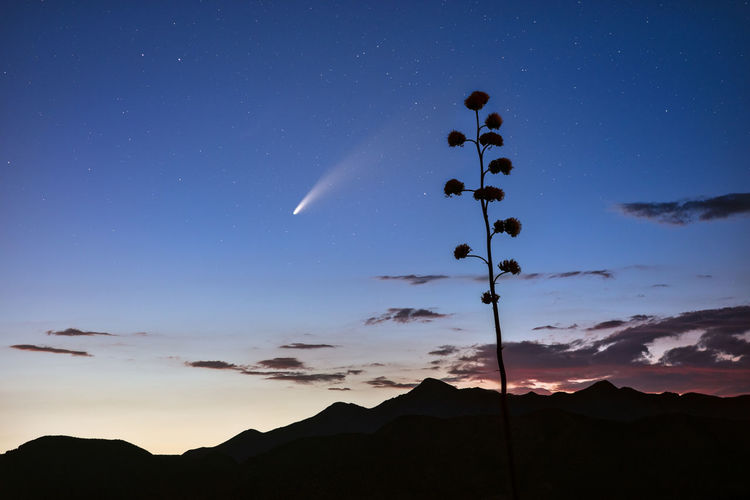Comet neowise streaks across the night sky above the tonto national forest near of phoenix, arizona.