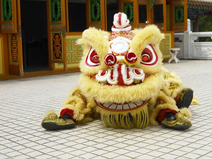 yellow lion dance at temple Celebration Gong Xi Fa Cai Good Luck Lion Dancers Lion Dance Performance Traditional Culture Animal Themes Chinese Lion Chinese New Year Close-up Costume Cultures Festive Lion Dance Opening Event Performance Religious  Special Occasion