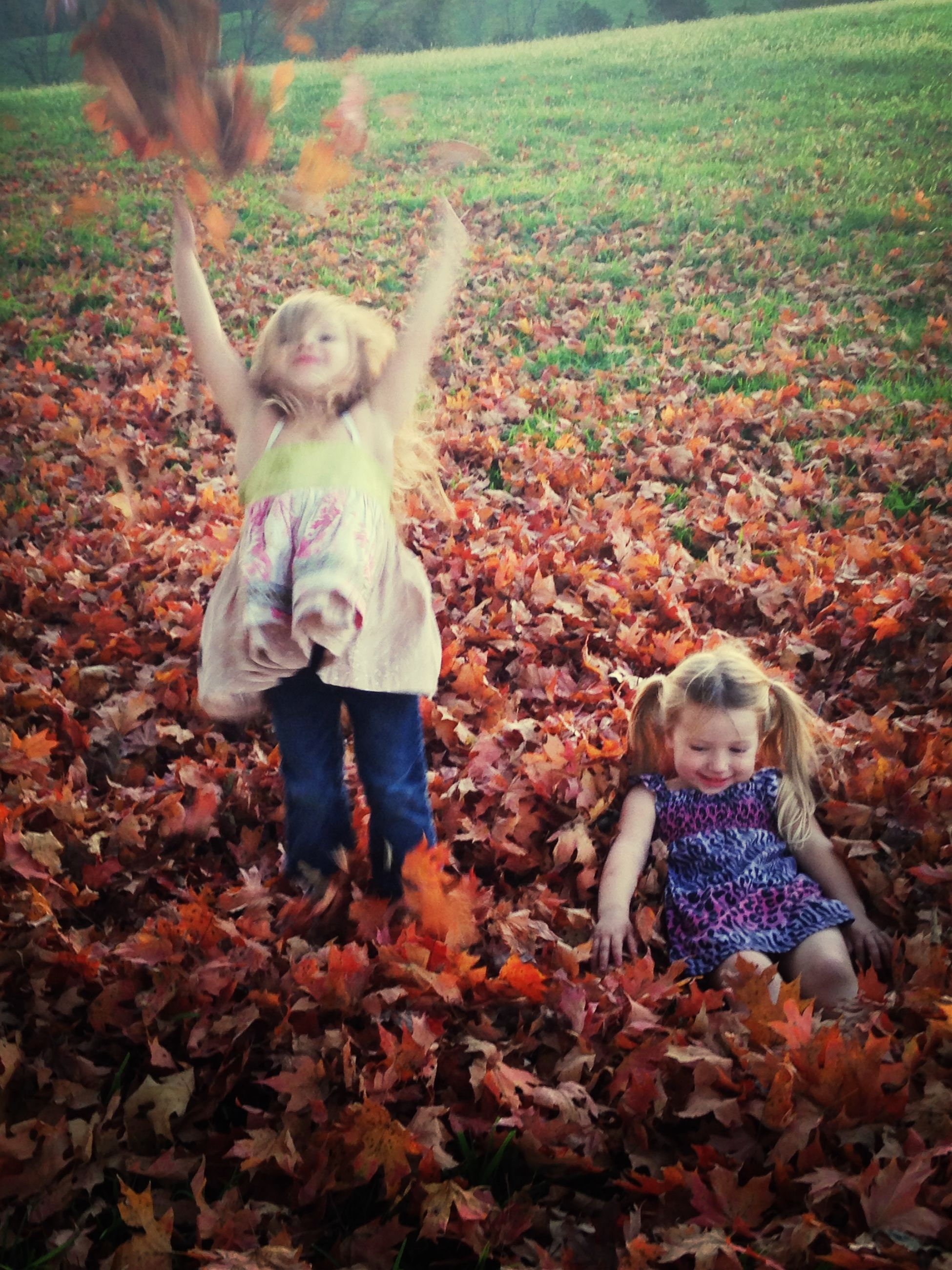 childhood, elementary age, boys, innocence, full length, person, girls, cute, autumn, casual clothing, lifestyles, leisure activity, field, playful, looking at camera, portrait, happiness, leaf