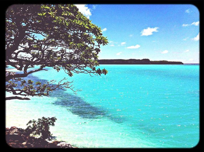 welcome to my paradis! Enjoying The Sun Sunshine Sea Swimming