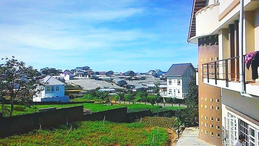 My vacation in DaLat, VietNam Vacation Time Sightseeing Naturelovers Sky And Clouds Houses Sunny Day Citylife Blue Sky Grassland Green Green Green!