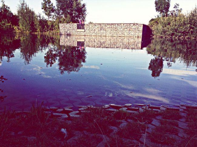 Reflections. First Eyeem Photo