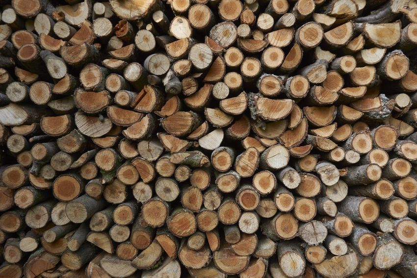 Firewood stack Firewood Firewood Stack Forestry Industry Fuelwood Repetition Stack Wood Wood - Material Woodpile