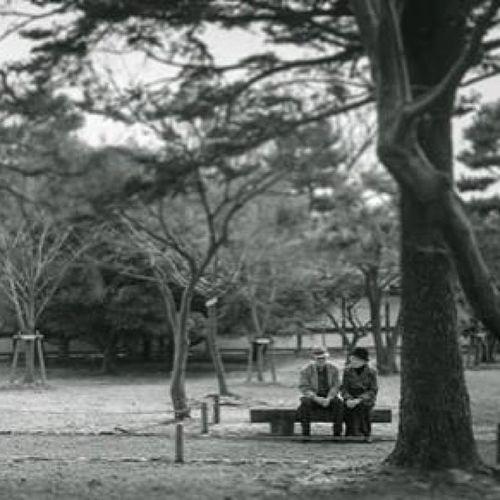 Romantic Scene..... Romantic Igth Thailand_allshots Bw blackandwhite bnw mono noir thailand_bw tree scene