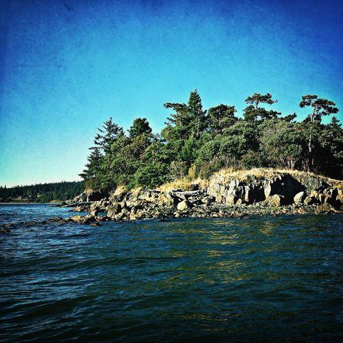 Dead Mans Island Puget Sound Islands