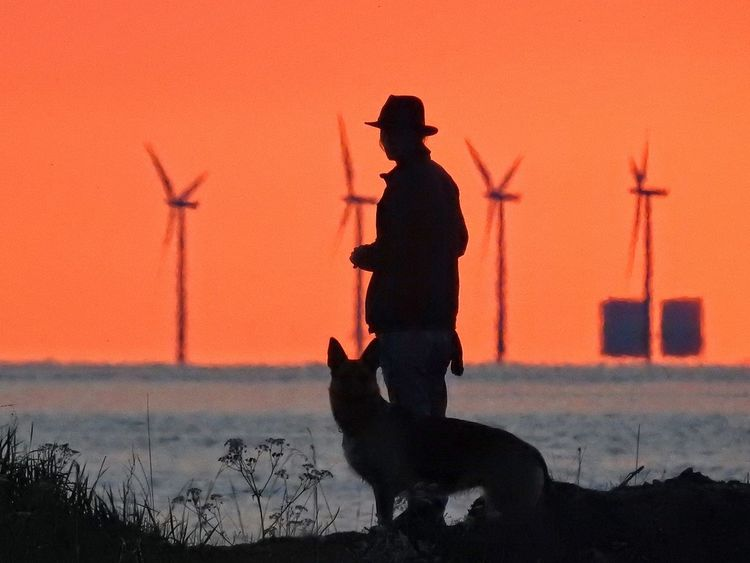 Check This Out Hanging Out Hello World Relaxing Enjoying Life Sweden Skåne Sea Dusk Sunset Dog Hat Silhouette Windcraft