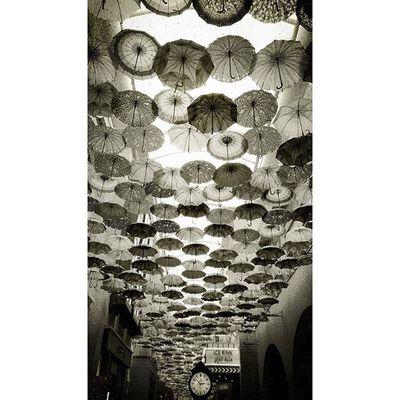 Dubai Mall Dubai Iphoneonly Like4like Fff Follow فولو  تصويري  لايك دبي