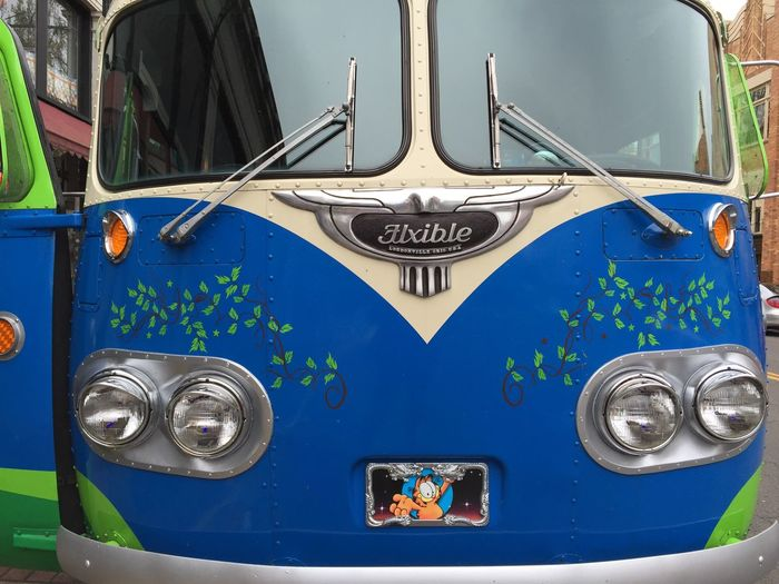 What The Bus? Front Silver  Headlights Refurbished Painted Vines