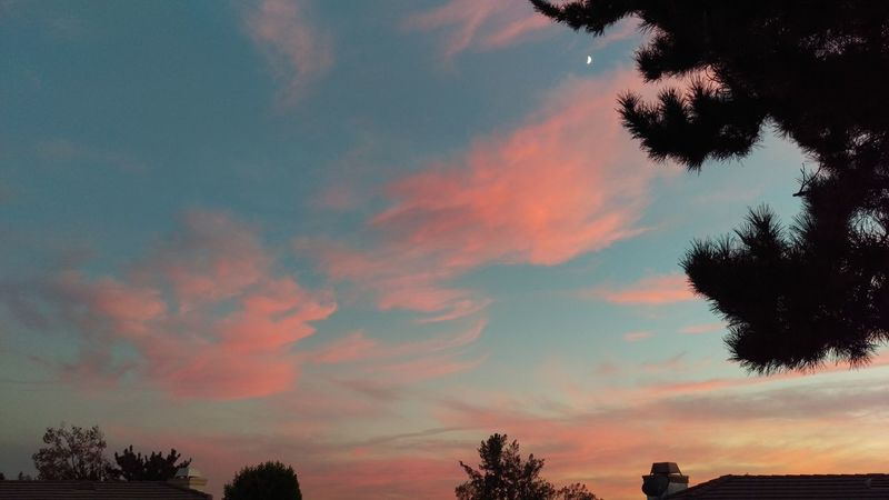 Nofilternoedit itNofilter Sunset California HTC_photography HTC One M9