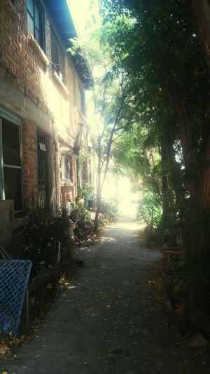 Callejonsitos, de ciudad juarez, Notodoesviolencia