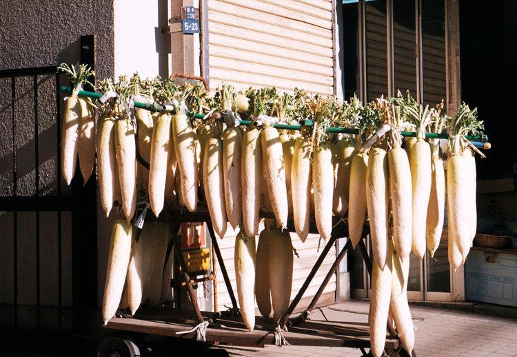 Hanging radish Japan Weird Daikon Film Photography Hanging Radish Sunny Day The Street Photographer - 2018 EyeEm Awards