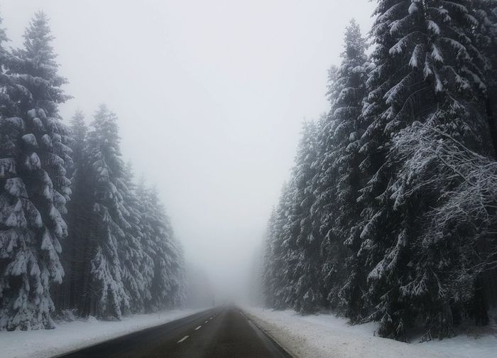 Winter in Ardennen, Belgium Wintertime Snow ❄ Ardennen Belgium Nature EyeEm Nature Lover Cold Beautiful Snow Weather Fog Tree Cold Temperature The Way Forward