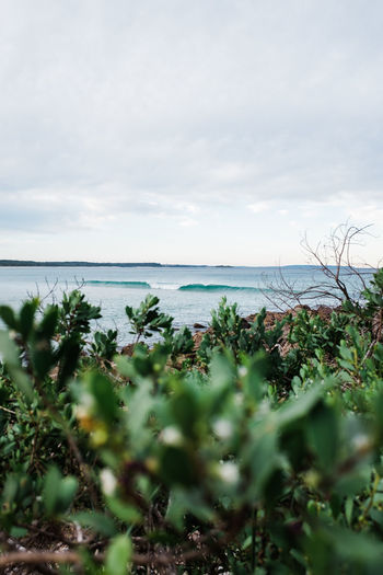 Small surf -