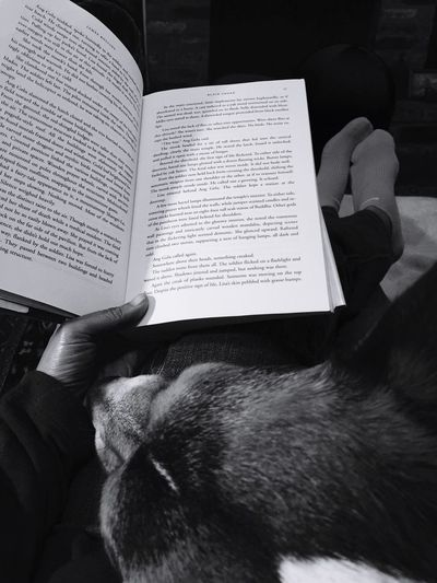 Relaxing with my dog and a good book. Relaxing EyeEmBestPics Dogs Of EyeEm EyeEm Pets