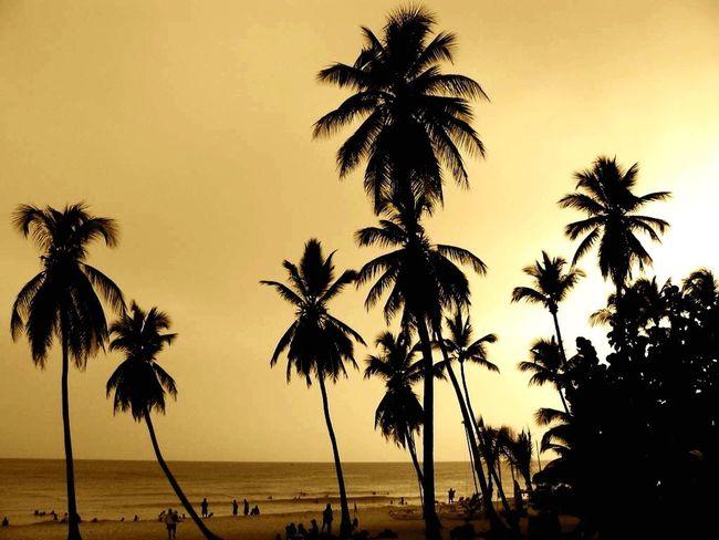 Sunset in the Dominican Republic. DeLeonStrong Optoutside
