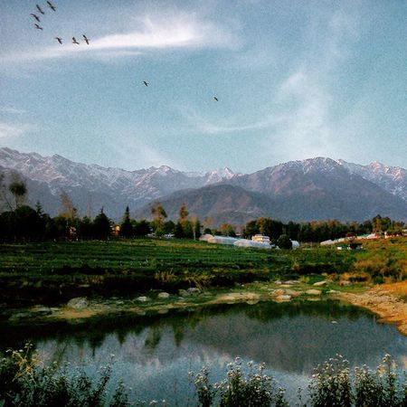 Unreal Effect Landscape Palampur Cskhpkv Farm Himachalpradesh Nature Cloudporn Clouds Reflection Skyporn Bluesky Incredible Heaven Lonelyplanetindia Landscape Bestescapes Shutterbug Himachalpictures Mountains Dhauladhar Ranges Dusk XPERIA ourplanetisbeautiful india_ig