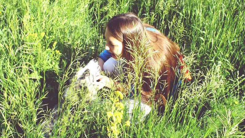 С этой собакой я познакомилась когда искала насекомых на энтомологическую коллекцию по зоологии, эта собачка увязалась и играла с нами , пока мы собирали стрекоз возле реки. Собаку назвали Лайкой т.к. она всегла лаяла) целая история получилась:) собакадруг быловесело типкруто