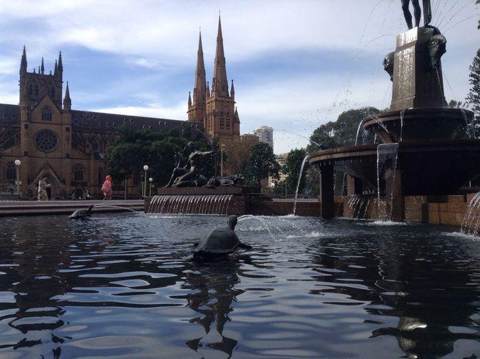 Sydney Fountain Water Art Sydney Opera House