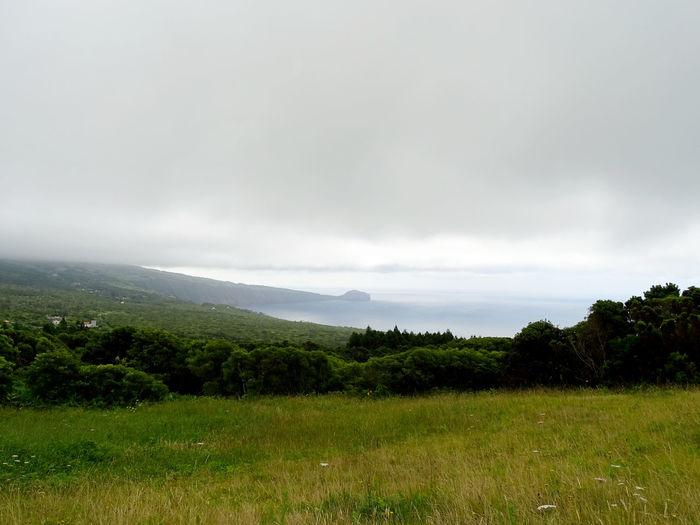 Azores Tree Irrigation Equipment Water Storm Cloud Rural Scene Field Sky Grass Landscape Thunderstorm