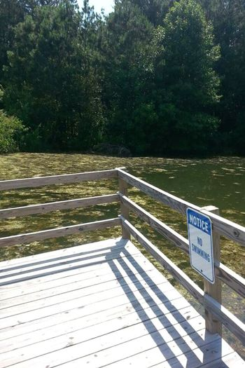 No People Railing Tree Outdoors Day Nature Dock Noswimming Sign