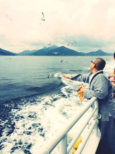 너무도 천진난만하게 갈매기 밥을 주시던 스님께 저 작은 생명하나 소중히 여기는 마음이 들었다면 지나친 비약인가? In Passenger Ship Tongyoung Pure Love