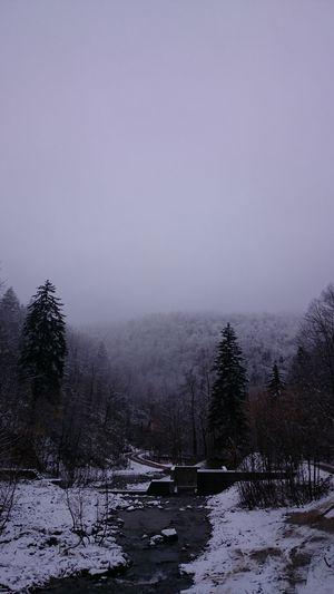 めちゃ雪。笑 雪が降ったよ~⛄: http://youtu.be/WpIv-CyhSSs美深町