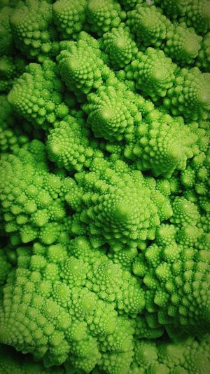 Close-up of romanesque cauliflower