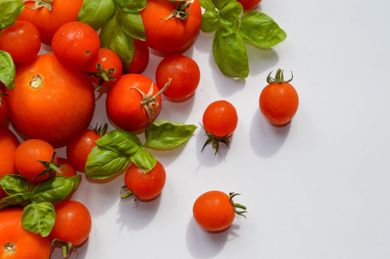 High angle view of cherry tomatoes in plate