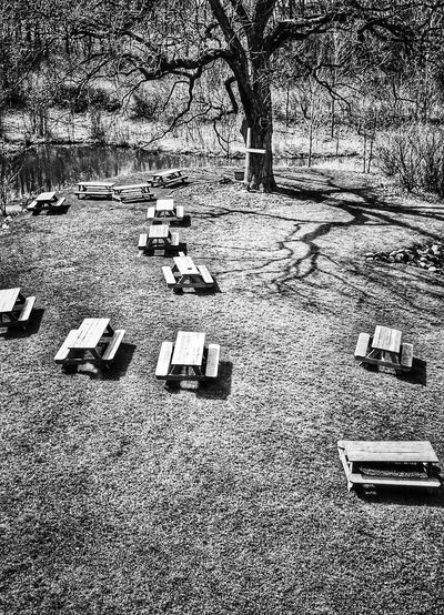 Picnic tables in black and white Cross EyeEm Gallery Black And White Blackandwhite Landscape EyeEm Best Shots - Black + White Picnic Table Monochrome Eyeem Monochrome Taking Photos Picnic Picnic Tables Black & White Blackandwhite Photography Table Tables Taking Pictures Black & White Photography Spring Time Springtime Black&white Black And White Photography Picnic Time ♡ Picnic Area Picnic Spot