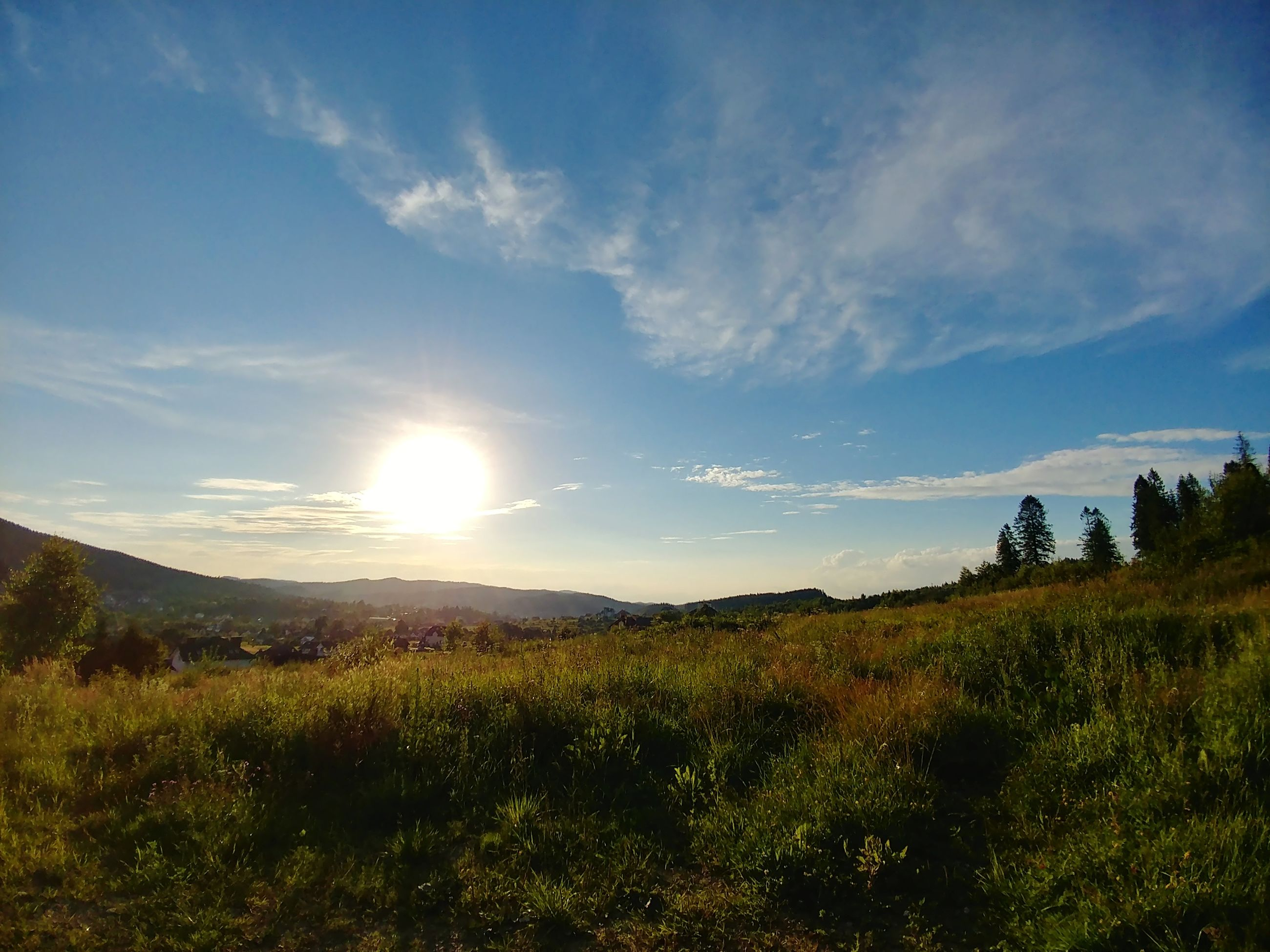 sky, tranquil scene, beauty in nature, tranquility, scenics - nature, cloud - sky, plant, nature, sunlight, environment, land, landscape, grass, non-urban scene, field, no people, day, growth, tree, outdoors, sun, lens flare, bright
