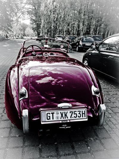 Purple Oldtimer JAGUAR Car Outdoors Cabrio Old-fashioned Hello World IPhoneography From My Point Of View Tranquil Scene Interior Design EyeEm Gallery Luxxxs Taking Photos Streetphotography Blackandwhite The Drive Land Vehicle Walking Around Traveling Car Interior Car Collection Garage Ride Or Die