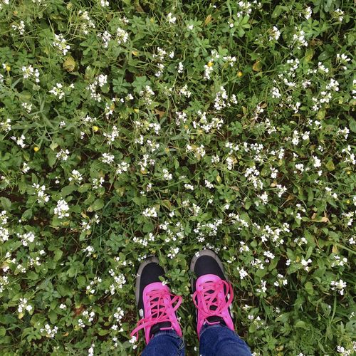 Grounding Spring Flowers Mothernature Ibiza Pink Laces Blissful Neon Pink Feet On The Ground