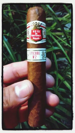 Hoyo De Monterrey Habana Enjoying Life Relaxing