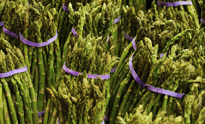 Full frame shot of asparagus bundles at market