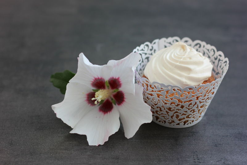 Beauty In Nature Blossom Close-up Coffee Break Cupcake Cupcake Time Cupcake ♥ Cupcakes Day Drink Flower Flower Head Food Lovers Food Photographer Food Photography Fragility Freshness Horizontal Indoors  Nature No People Pampering Ready-to-eat Sweet Food Zen-like