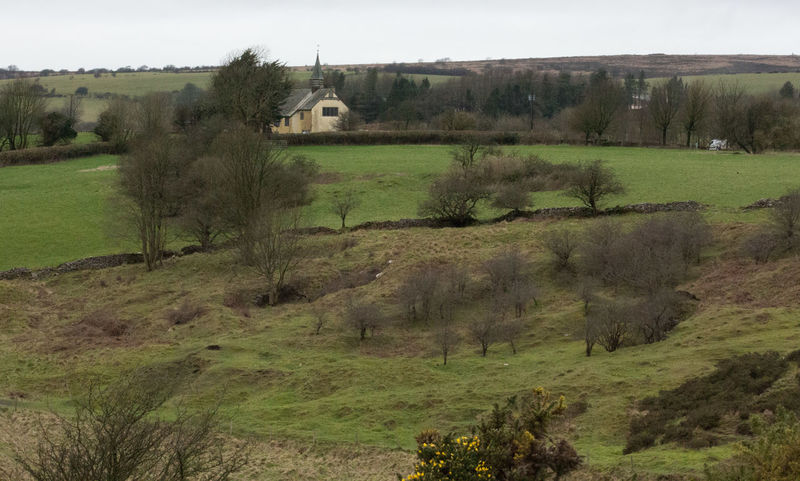 Chapelhill Church Countryside Day Field Grass Grassy Green Color Landscape Landscape_photography No People Outdoors Priddy Lights Remote Scenery Scenic Somerset England Tree