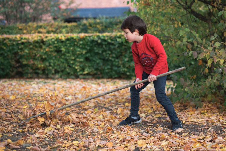Full length of boy cleaning leaves on land