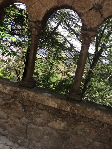 Tree Nature Forest Architecture Built Structure Outdoors Branch Portugal Quinta Da Regaleira Vacations Wall Castle Castles Castle Ruin Castle Walls Castle View  Old Old Ruin Moss Mauer Portugal History History Portugal Architecture Schloss EyeEmNewHere An Eye For Travel The Graphic City The Great Outdoors - 2018 EyeEm Awards