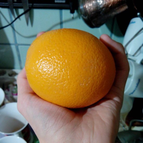 #citrus #orange #2013 #апельсин #апельсины Orange Citrus  2013 апельсин апельсины