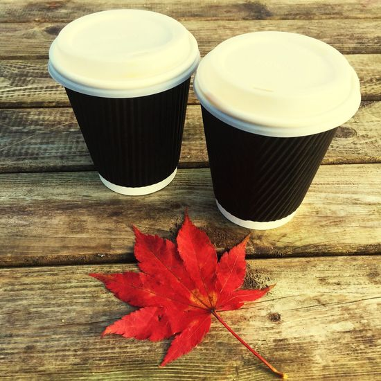 Autumnal coffees Table Wood - Material Food And Drink No People Freshness Day Close-up Outdoors Nature Autumn Leaf Maple Maples Coffee Coffees Takeaway Plastic Cups Cups Cup Fall Leaves Japanese Maple Coffee Close Up