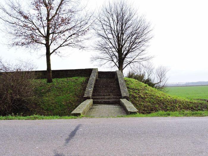 Landscape Architecture Dordrecht Check This Out