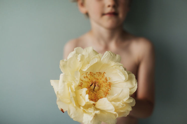 Close-up of person holding rose bouquet against white background