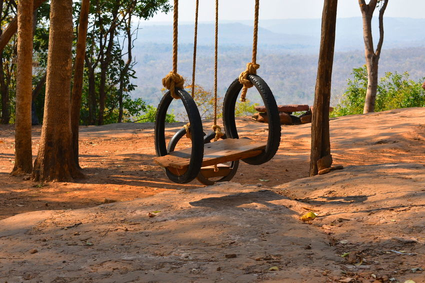 Country Road Tree Trees Tropical Forest Dry Season Hill Top Mountain No People Outdoors Rest Area Road Rest Area Swing View Point Wooden Swing Wooden Swing At Country Rest Road Area On Hill View Point