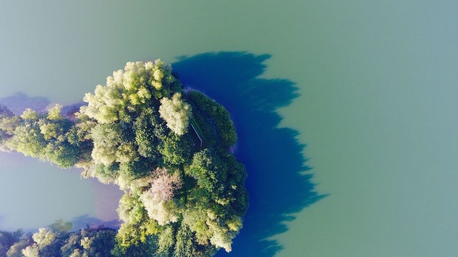 From Above  Birds View No People Growth Sky Nature Blue Tranquility Beauty In Nature Tree Scenics Day Clear Sky Low Angle View Outdoors Sea Close-up Island Of Trees Trees In Water Green Water Lake View Lost In The Landscape