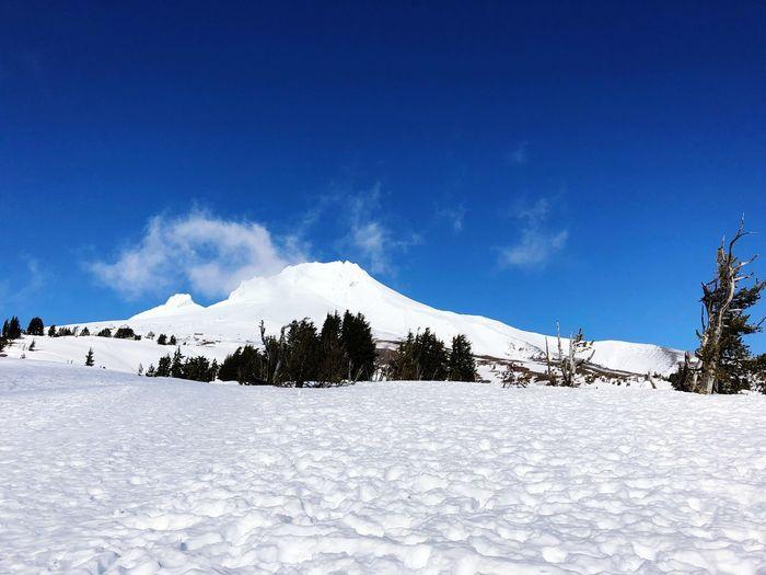 Snow Winter Cold Temperature Sky Mountain Scenics - Nature Tree