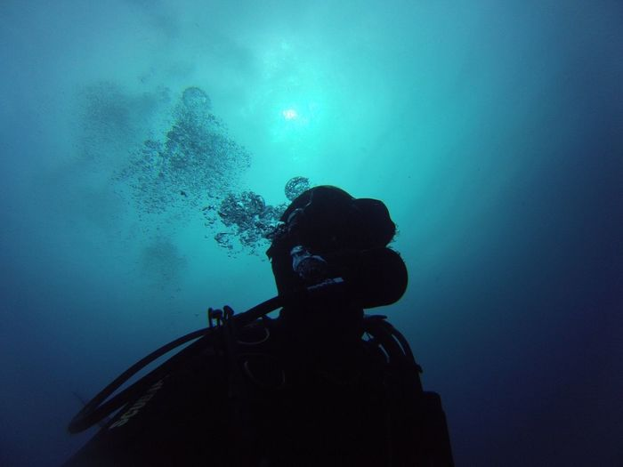 Scuba Diving in the Azores The New Self-Portrait Darkness And Light Underwater Photography Self Portrait Around The World Adrenaline Junkie Blue Wave