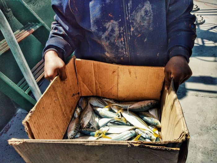 Low Section Midsection Occupation Fish Market Raw Served Seafood Fishing Industry Fishes Prepared Food Farmer Market
