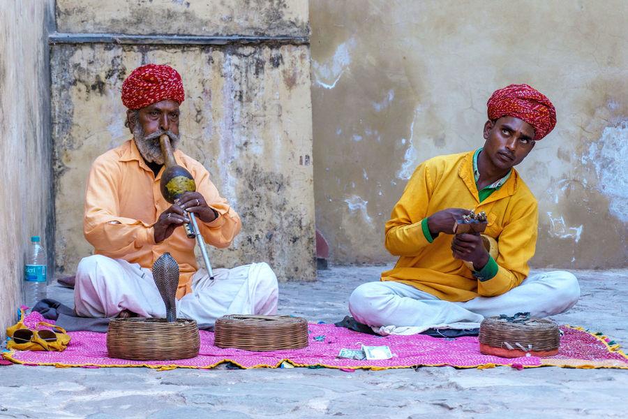 Snake charmer India Jaipur Jaipur Rajasthan Snake Snake Charmer Cobra Museum People Rajasthan Sitting Tradition Turban